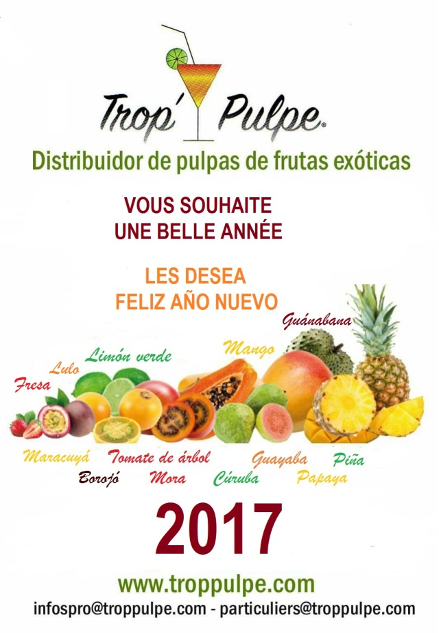 nouvel-an2016-11-13-10-12-06-copie
