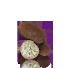 Cupuacu